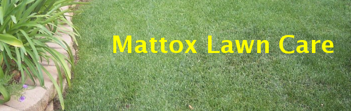 Mattox lawn care serves Aberdeen MS and the surrounding area. Amory Ms, Okolona Mississippi, Monroe County, Nettleton Houston