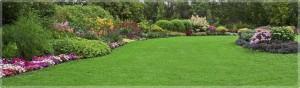 Mattox Landscaping 2